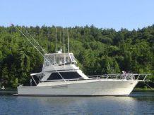 1989 Viking 45 Convertible