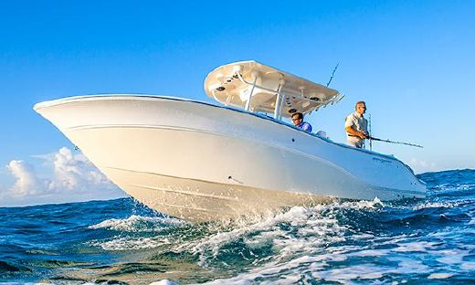 2015 Sea Fox 256 Commander