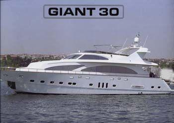 2006 Giant 2006