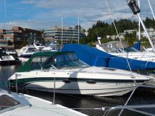 1999 Chaparral 2835 SS