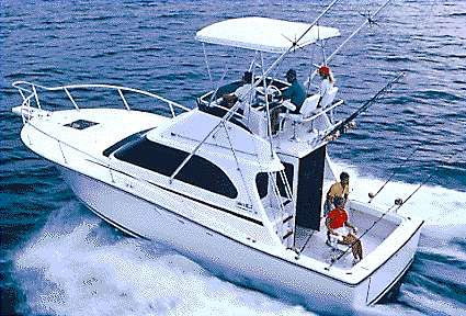 1999 Luhrs Tournament 320 Convertible