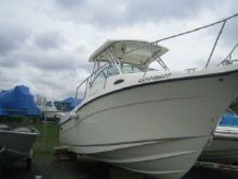 2008 Seaswirl Striper 2601 Walkaround I/O