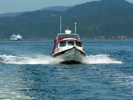 2006 C-Dory Cruiser