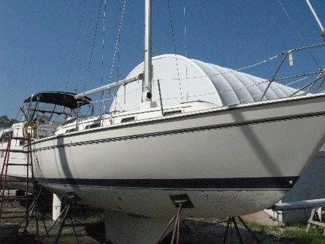 1986 Pearson 303