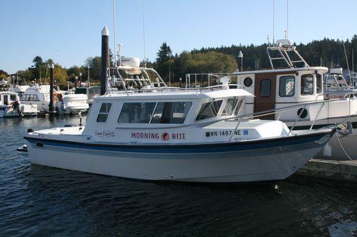 1993 Sea Sport Explorer 2400