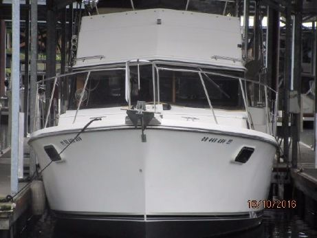 1989 Carver 3607 Aft Cabin
