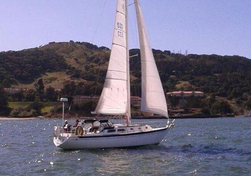 1979 Islander sloop