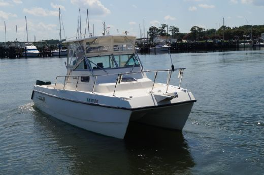 1997 Sea Cat SL5C CAT Walkaround