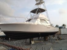 1969 Bertram 38 SF Flybridge Moppie Classic