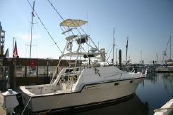 1985 Luhrs 340 Open Sportfish