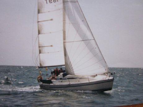 1988 Mg Spring 25