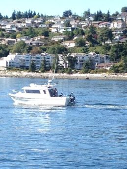 2002 Seasport 2400