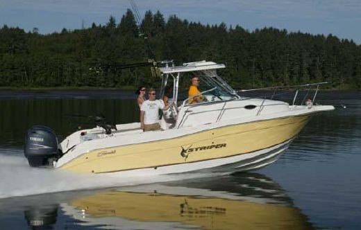 2005 Seaswirl Striper 2601 Walkaround O/B