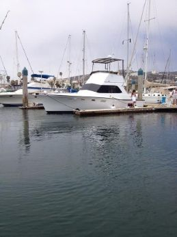 1972 Egg Harbor 33 Sport Fisher