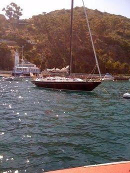 1975 Islander Yachts Sloop