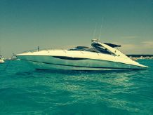 2008 Sunseeker Superhawk 43