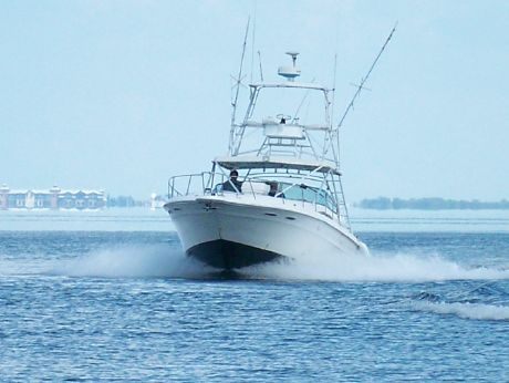 1992 Sea Ray 400 EXPRESS with Tower