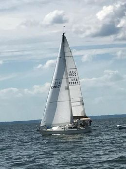 1985 Frers F-36 by Carroll Marine