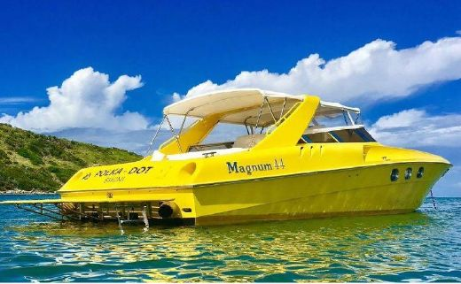1999 Magnum Banzai Express Cruiser