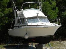1977 Bertram 33 Flybridge Cruiser