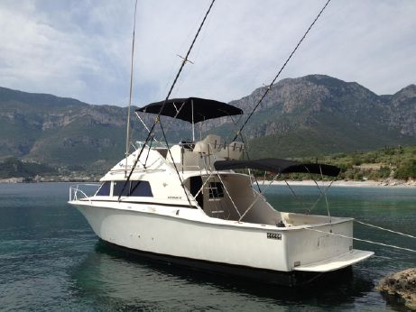 1986 Bertram 33 Flybridge Cruiser