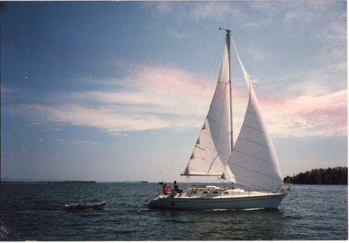 1986 Elan 31