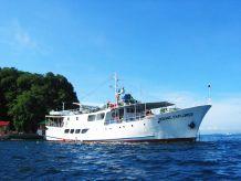 1979 Dive Cruiser T260-ST (OE)