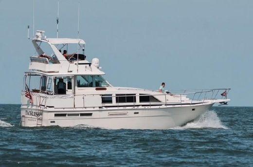 1981 Bertram 42 Motor Yacht