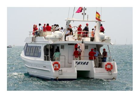 2006 Custom Catamaran Cruiser