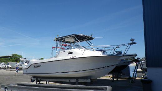 2001 Angler 2400WA