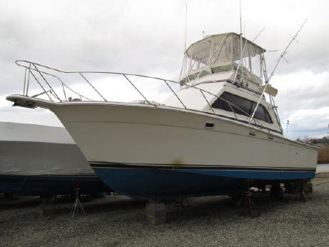 1986 Egg Harbor 35 Sport Fisherman