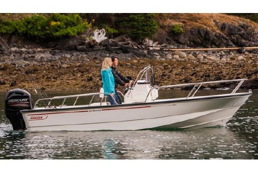 2016 Boston Whaler 190 Montauk