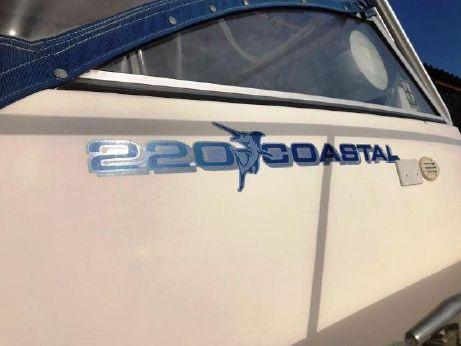 2001 Wellcraft 220 Coastal