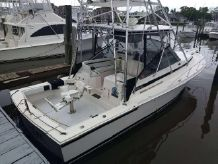 1995 Blackfin Combi 2012 Engines
