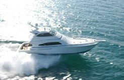 2005 Bertram 630 Flybridge
