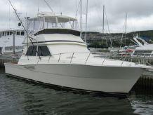 1988 Viking Convertible
