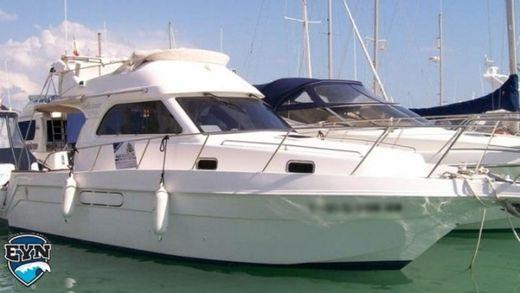 2000 Astinor 1000 LX
