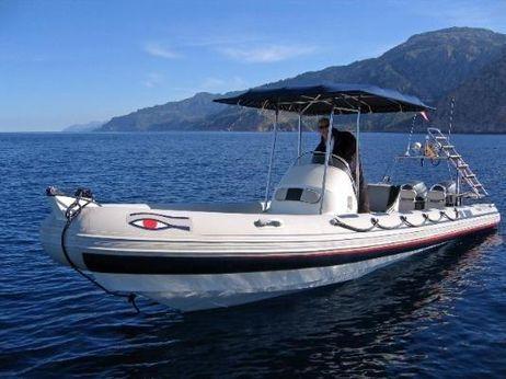 2004 Ribeye S785