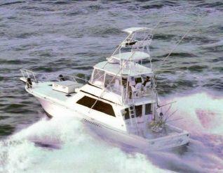 1996 Viking Boats 50 Sportfish Convertible