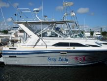 1989 Bayliner SUNBRIDGE