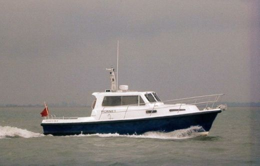 2002 Mitchell 31 Mk III