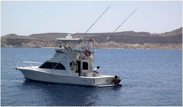 2003 Albemarle 325 Convertible