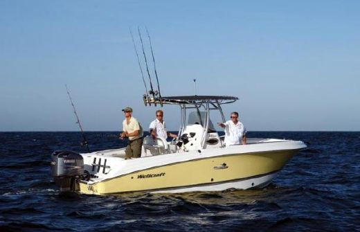 2005 Wellcraft 252 Fisherman