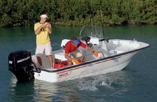 2009 Boston Whaler 150 Montauk