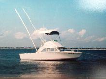 1975 Bertram 26 Fly Bridge Cruiser