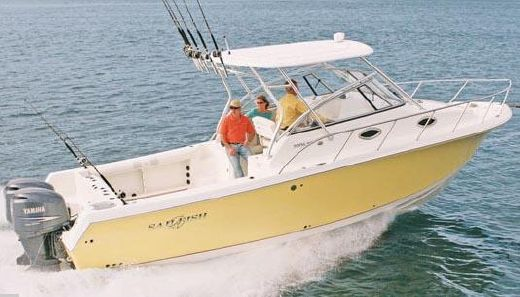 2010 Sailfish 30-06 Express