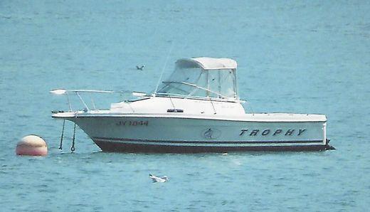 1999 Bayliner Trophy 2052FD