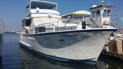 1975 Chris Craft Roamer