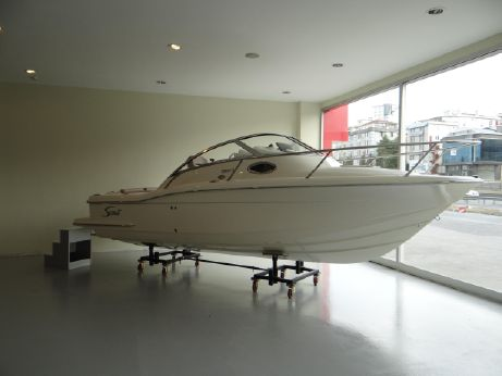 2011 Scout Boats 225 ABACO