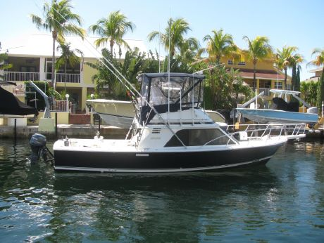 1988 Blackfin 32 Flybridge